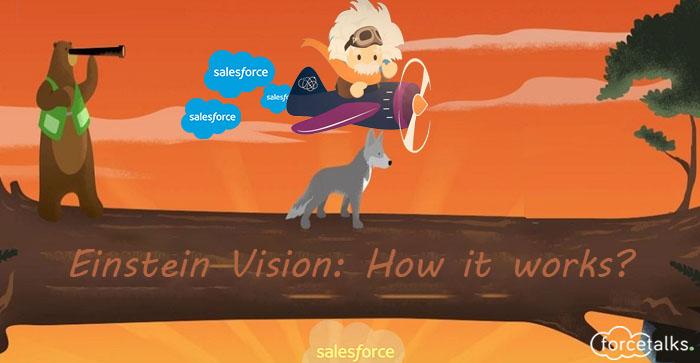Salesforce Einstein Vision: How it works?