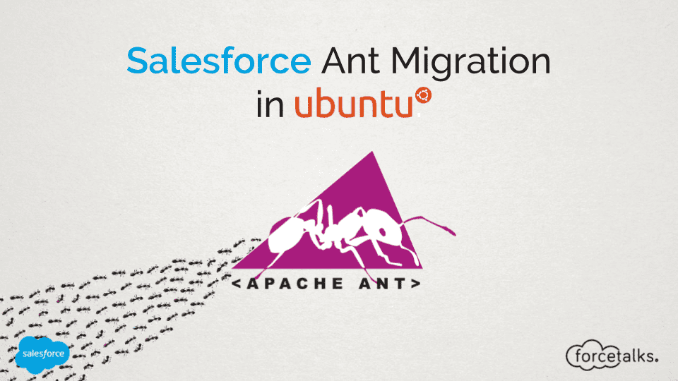 Salesforce Ant Migration in Ubuntu