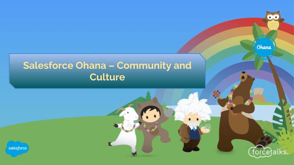 Salesforce Ohana