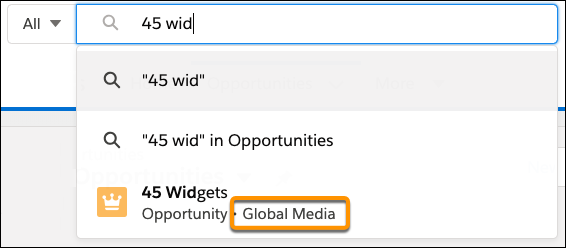 Searching Opportunities