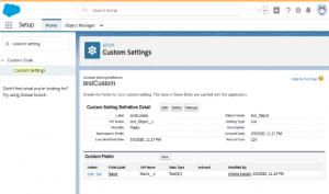 types of custom settings