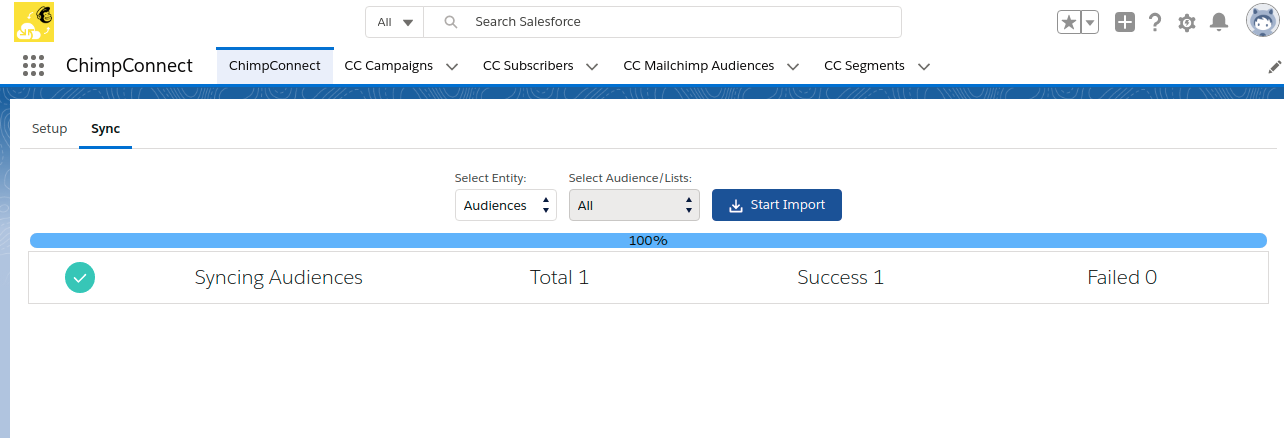 Audience-Salesforce