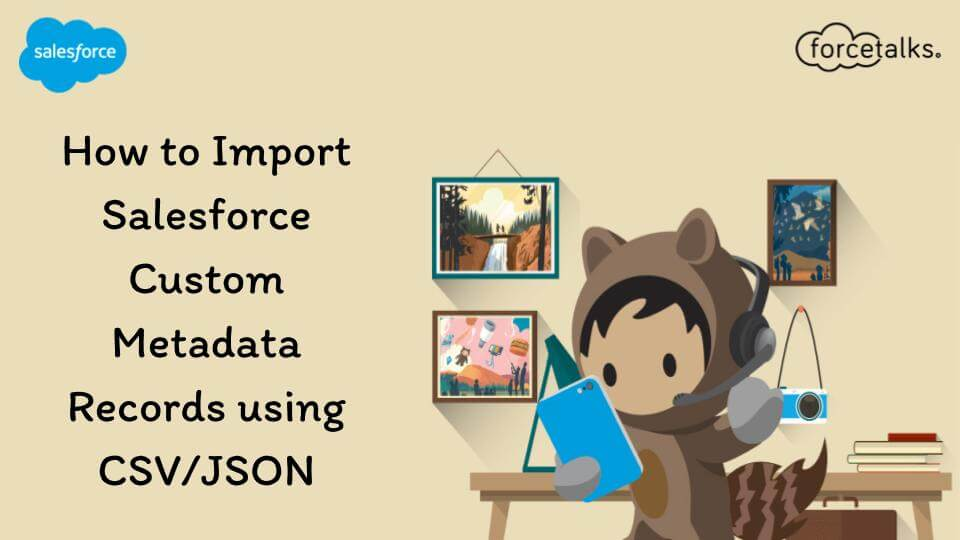Salesforce Cuastom Metadata