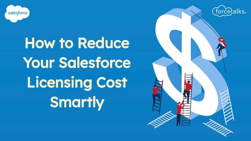 Salesforce Licensing Cost