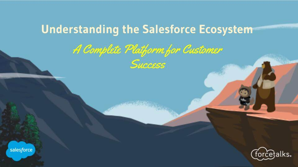 Salesforce Ecosystem