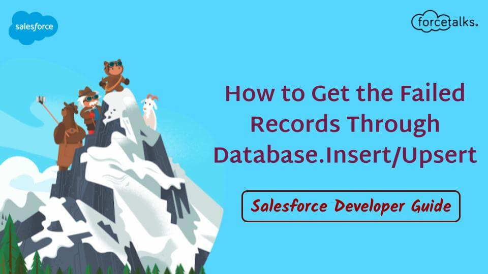 salesforce Records