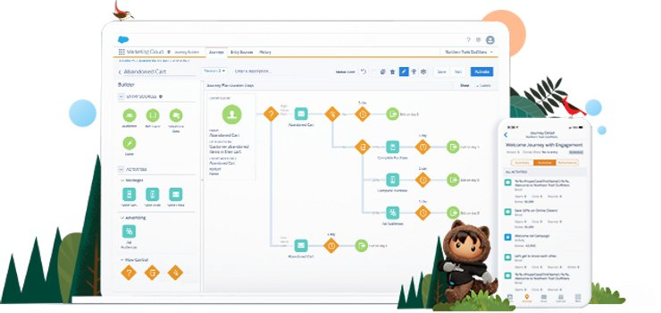 What Is Marketing Automation & How It Can Benefit Your Organization? | Salesforce
