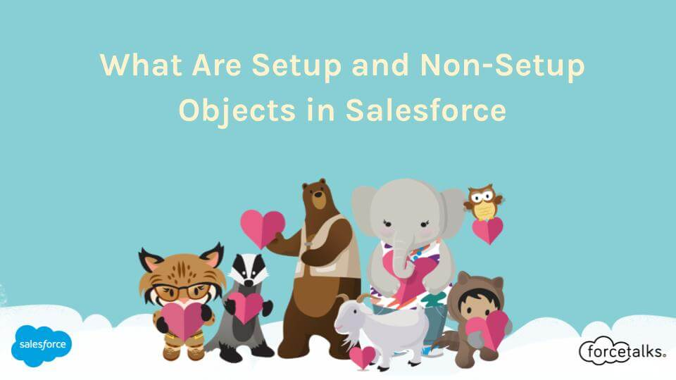 Objects in Salesforce