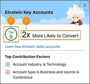 Einstein Key Accounts