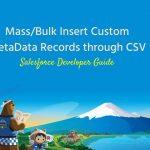 MetaData Records